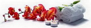 Антицеллюлитный массаж в Харькове, Антицеллюлитный массаж Харьков, Услуги массажиста в Харькове, Антицеллюлитный массаж на дому и в офисе Харьков